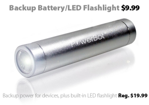 PowerBot Universal Power Bank and LED Flashlight for $9.99 at Connecting Point